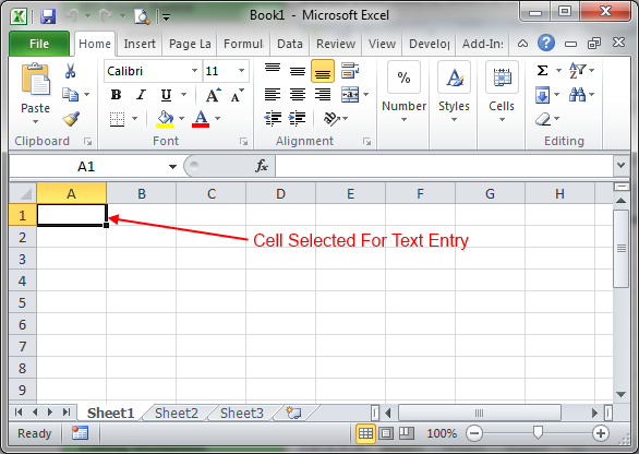 Excel_2010_Text_Entry