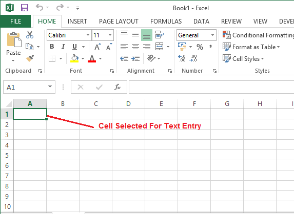 Excel_2013_Text_Entry