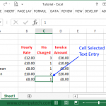 Excel_Data_Entry1
